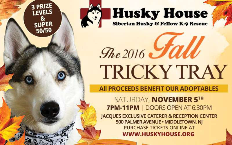 Husky House Fall Tricky Tray 2016