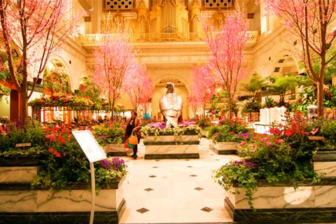 Prepare For Spring With Macy's Flower Show