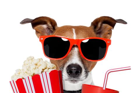 New York's Dog Film Festival Arrives To Entertain All Canine Lovers