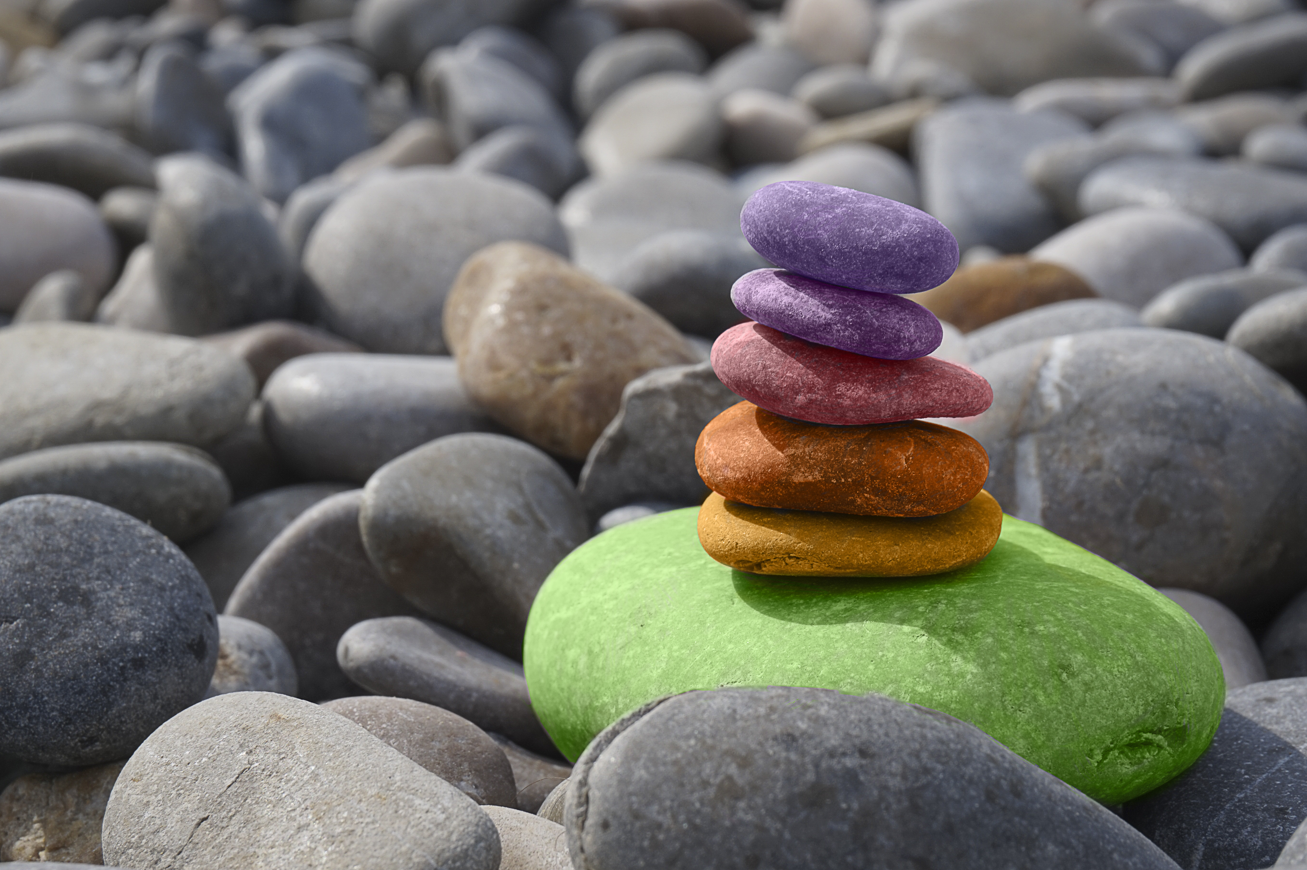 Free Taster-Intro to Mindfulness