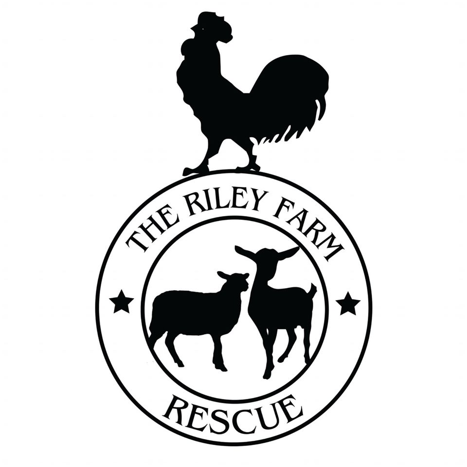 The Riley Farm Rescue Experiences