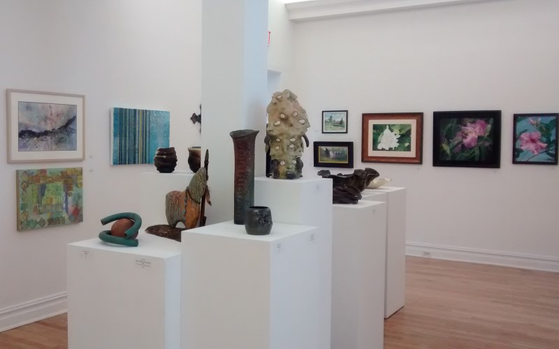 Members' Non-juried Exhibit