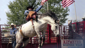 73rd Annual Gerry Rodeo