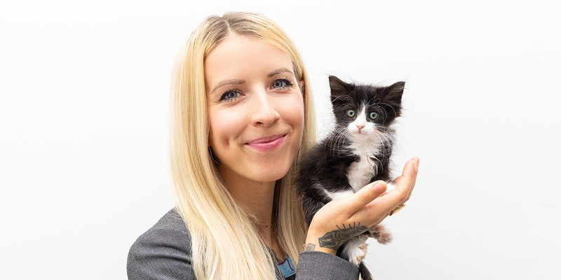 Catology: Kitten Care Series with The Kitten Lady
