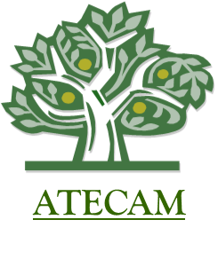 ATECAM Nursing Conferences